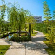 Sauce2 Cala de Mijas_Communal garden II_Realista Quality Properties Marbella