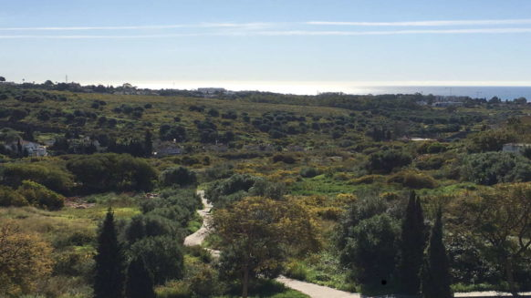 Bargain Plot with sea views for sale in Los Flamingos Benahavis-Realista Quality Properties Marbella (7)