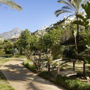 Lomas del Rey Golden Mile_communal Graden area I_Realista Quality Properties Marbella