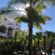 Columbus Hills garden_Realista Quality Properties Marbella