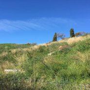 Bargain Plot with sea views for sale in Los Flamingos Benahavis-Realista Quality Properties Marbella (4)