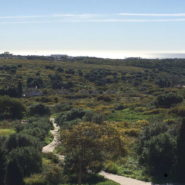 Bargain Plot with sea views for sale in Los Flamingos Benahavis-Realista Quality Properties Marbella