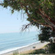Garden Beach Townhouse Estepona for sale_walking distance to Estpona center_ Quality Properties Marbella 4