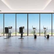 Villa La Finca de Jasmine_Realista Real Estate Marbella club-social-Gym